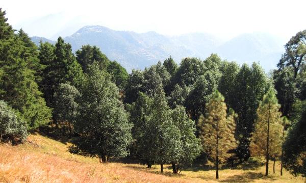 Nainital Eco Sensitive Zone